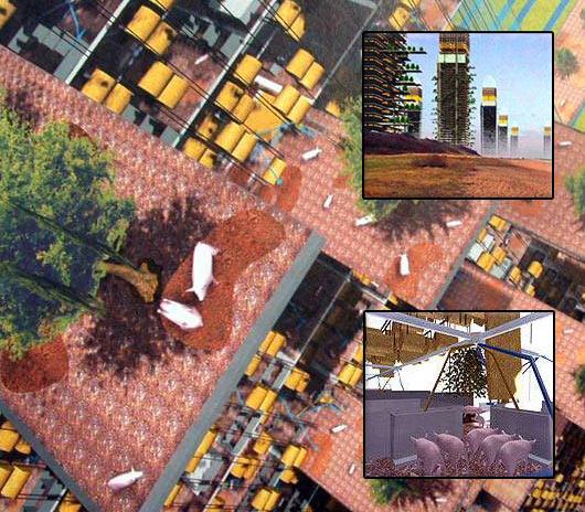 PIG CITY-MVRDV